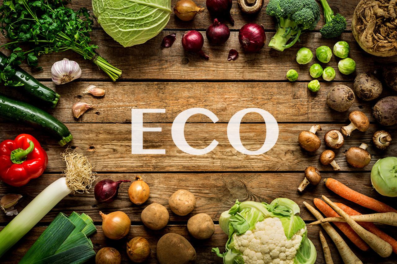 Еко-безпека харчових продуктів